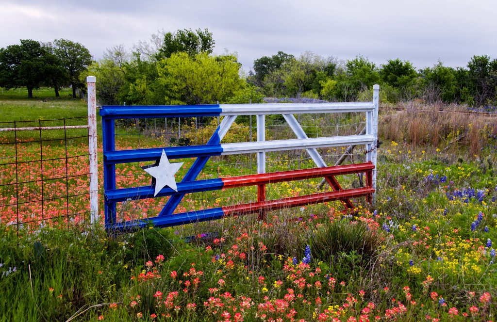 Moving from California to Texas Checklist
